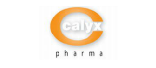 Calyx  Chemicals & Pharmaceuticals Ltd